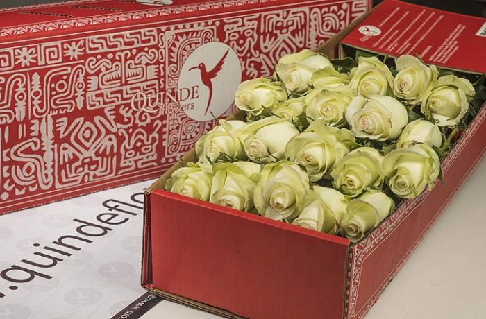 luxury roses box pack
