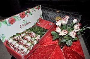 luxury christmas xmas roses pack