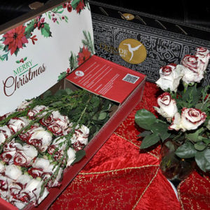 luxury christmas xmas roses pack